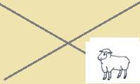 bez obrázku ovce